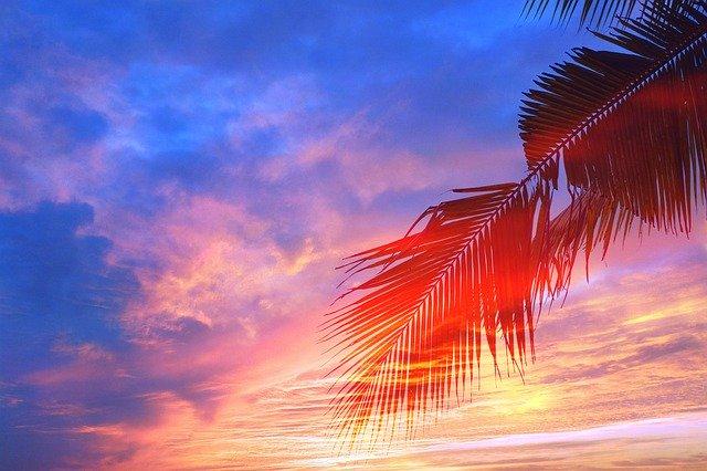 Artistic Sunset Landscape