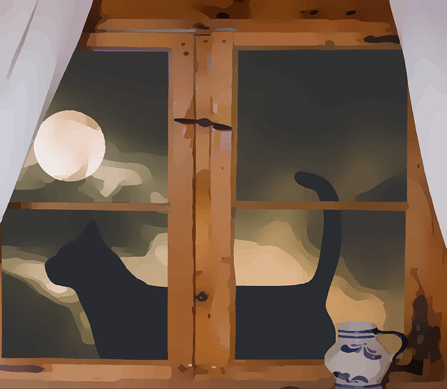 Free download Cat Moon WindowFree vector graphic on Pixabay free illustration to be edited with GIMP online image editor