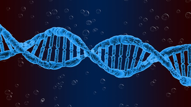 Free download Dna Genetics Biology free illustration to be edited with GIMP online image editor