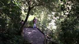 Free download Mirante Park Nature free video to be edited with OpenShot online video editor