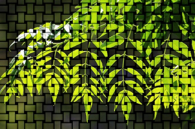 Free download Pattern Green Backlighting -  free illustration to be edited with GIMP online image editor
