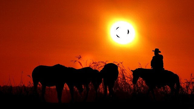 Free download Sunset Jumper Horses -  free illustration to be edited with GIMP online image editor