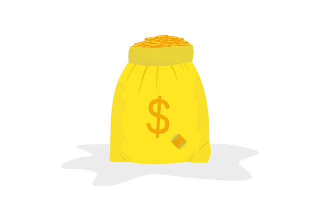 Free download Money Bag Cash CoinFree vector graphic on Pixabay free illustration to be edited with GIMP online image editor