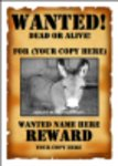 Free download Wanted Poster Template 1 Microsoft Word, Excel or Powerpoint template free to be edited with LibreOffice online or OpenOffice Desktop online